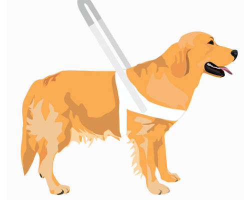 AppleVis and Guide Dogs Accessiblitity