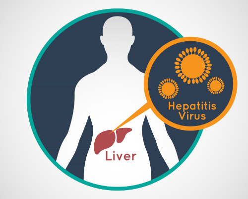 Patient Groups Address The Impact of Liver Disease